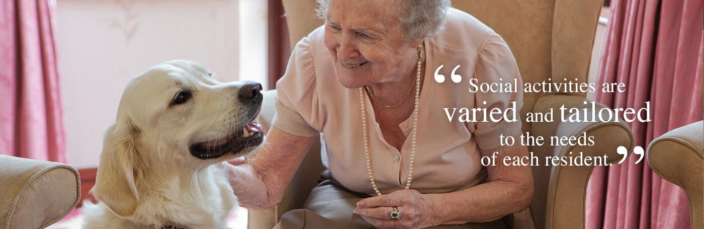 An elderly lady stroking a dog